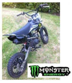 a Pit bike 110cc with Monster grahics