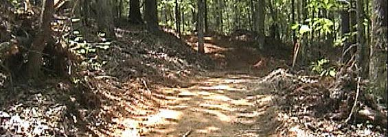 dna motocross