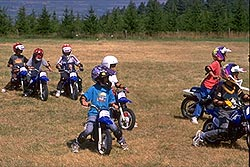 mini dirt bike videos