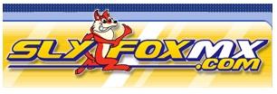 slyfoxmx.com logo