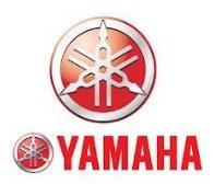 do you love the yamaha dirt bike