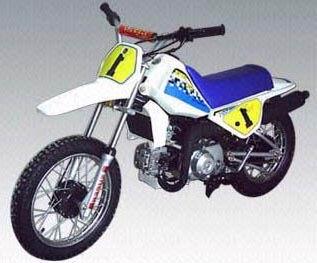 ebay motor dirt bike