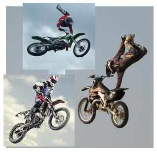 motocross fmx fmx team